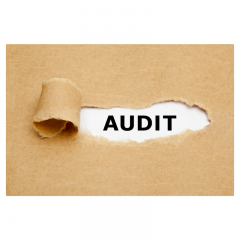 Red Flags that Could Trigger an Audit